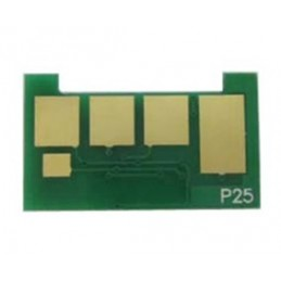 Programmable UNISMART Chip P25